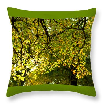 Throw Pillow featuring the photograph Fall's Unique Light by Karen Musick
