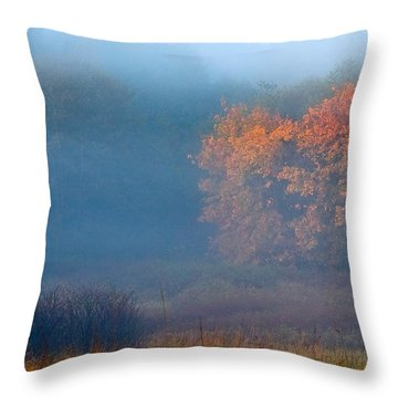 Throw Pillow featuring the photograph Falltime In The Meadow by Scott Holmes