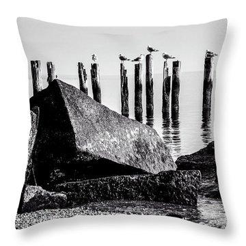 Falmouth Highlands Throw Pillow