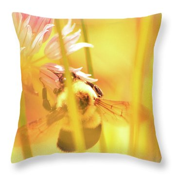 Fame Is A Bee Throw Pillow by Bob Orsillo