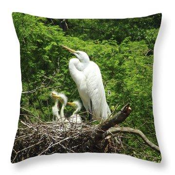 Family Affair Throw Pillow
