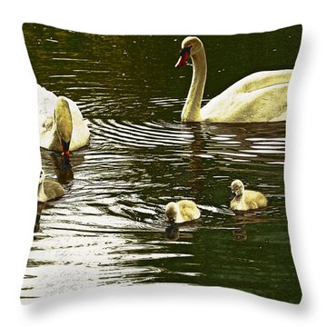 Throw Pillow featuring the photograph Family Day Out  by Fine Art By Andrew David