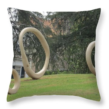 Throw Pillow featuring the photograph Family Of O's by Aaron Martens