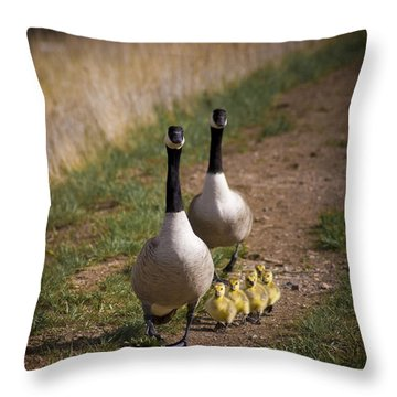 Family Time 2 Throw Pillow by Marilyn Hunt