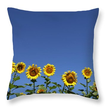 Family Time Throw Pillow by Amanda Barcon