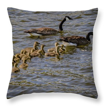 Family Tradition Throw Pillow by Ray Congrove