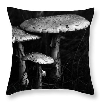 Throw Pillow featuring the photograph Family by Wanda Brandon