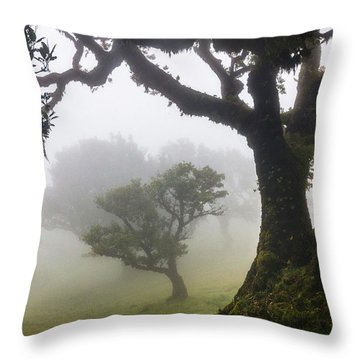 Fanal Throw Pillow by Evgeni Dinev