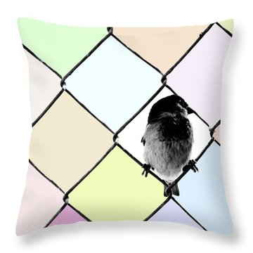 Fancy Colors Throw Pillow