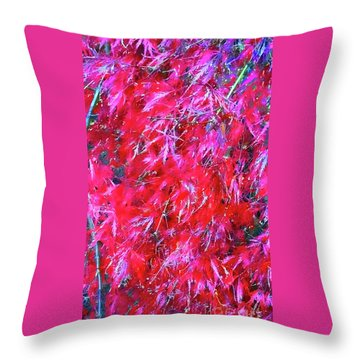 Throw Pillow featuring the photograph Fancy Pants by Roberta Byram