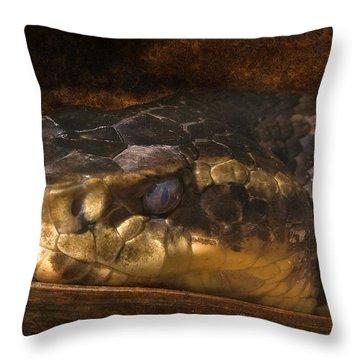 Fang Throw Pillow