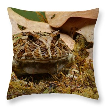 Throw Pillow featuring the photograph Fantasy - Horned Frog by Nikolyn McDonald