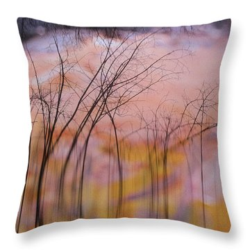 fantasy landscape trees - Fleeting Forest Throw Pillow