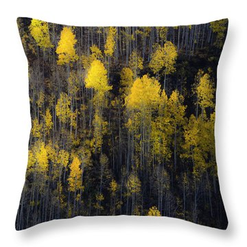 Far And Away Throw Pillow by The Forests Edge Photography - Diane Sandoval
