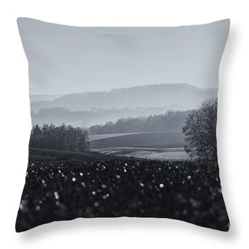 Far Away, The Misty Mountains Cold Throw Pillow