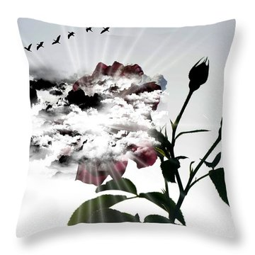 Far Beyond What Eyes Can See Throw Pillow