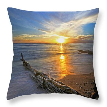 Far Out To Sea Throw Pillow by James Roemmling