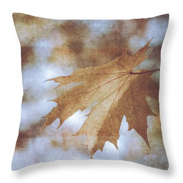 Throw Pillow featuring the photograph Farewell Summer by Ari Salmela