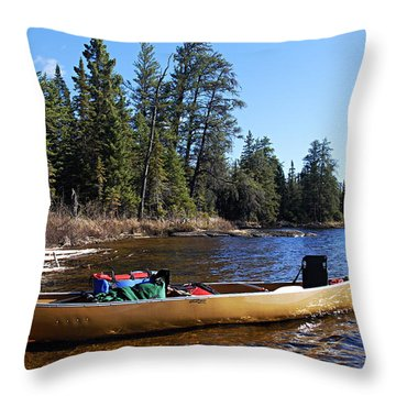 Farewell To Hope Lake Throw Pillow by Larry Ricker