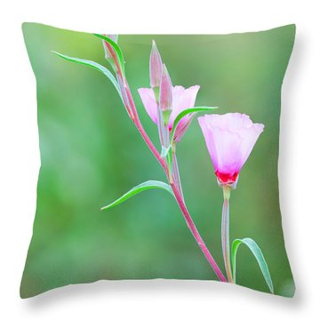Farewell To Spring Throw Pillow