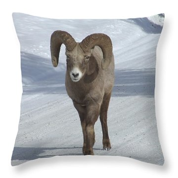 Farewell To The King Throw Pillow by Tiffany Vest