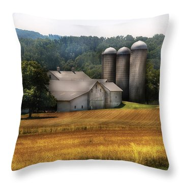 Farm - Barn - Home On The Range Throw Pillow by Mike Savad