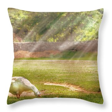 Farm - Geese -  Birds Of A Feather - Panorama Throw Pillow by Mike Savad