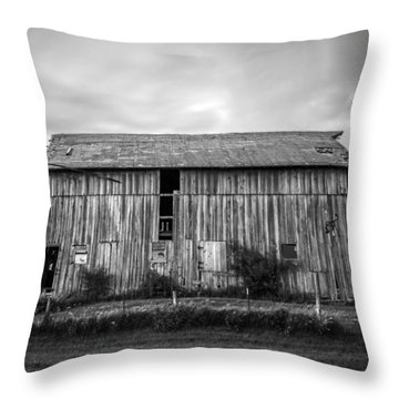Throw Pillow featuring the photograph Farm Charm by Ray Congrove