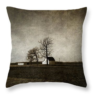 Farm Throw Pillow by Cynthia Lassiter