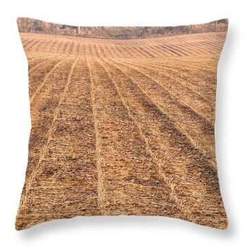 Farm Field Fog Throw Pillow