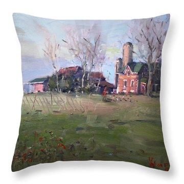 Farm In Georgetown Throw Pillow