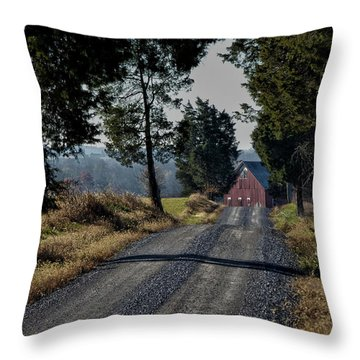 Throw Pillow featuring the photograph Farm Lane by Robert Geary