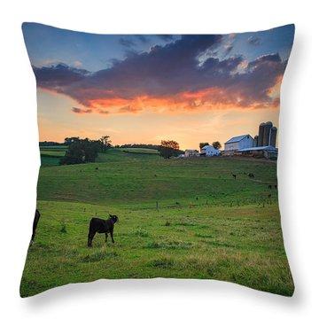 Farm Life In Beaver County Throw Pillow