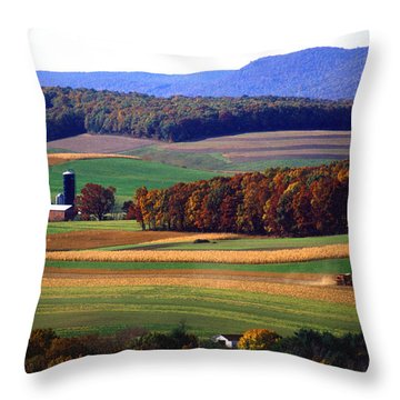 Farm Near Klingerstown Throw Pillow by USDA and Photo Researchers