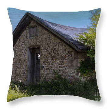 Farm Outbuilding Throw Pillow