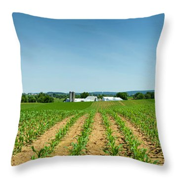 Farm Panorama Throw Pillow
