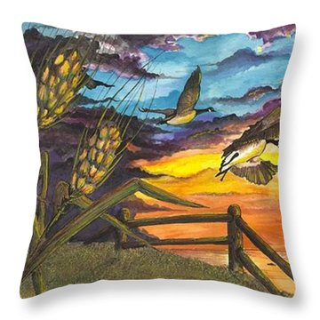 Farm Sunset Throw Pillow by Darren Cannell
