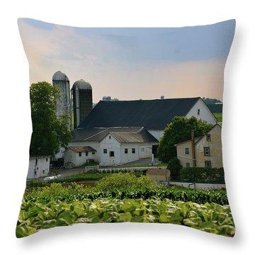 Farm Valley Throw Pillow