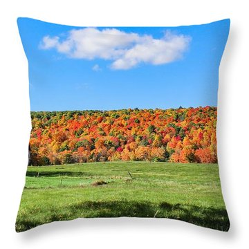 Farm View From Russellville Road Throw Pillow