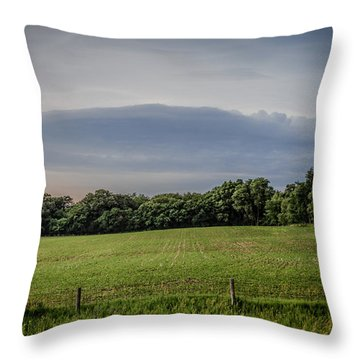 Farm Weather Throw Pillow by Ray Congrove