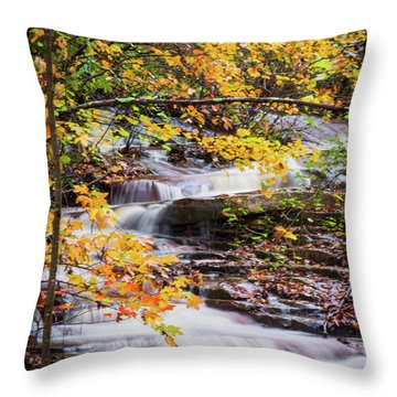 Throw Pillow featuring the photograph Farmed With Golden Colors by Parker Cunningham
