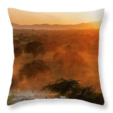 Throw Pillow featuring the photograph Farmer Returning To Village In The Evening by Pradeep Raja Prints