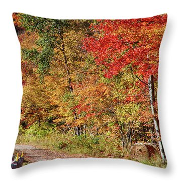 Throw Pillow featuring the photograph Farmers Path Of Fall Colors by Jeff Folger