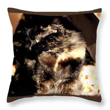 Farmhouse Cat Throw Pillow