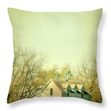Farmhouse In Arkansas Throw Pillow by Jill Battaglia