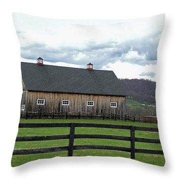Farmhouse In Northern Virginia Throw Pillow