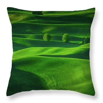 Farmhouse In The Waves Of Light Throw Pillow by Don Schwartz