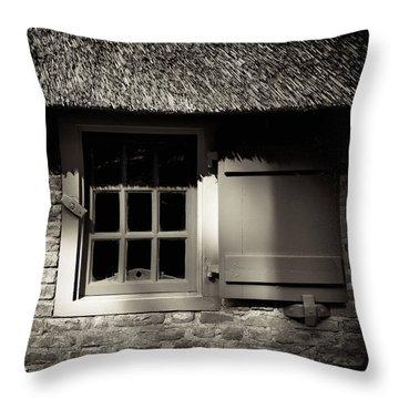 Farmhouse Window Throw Pillow