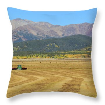 Throw Pillow featuring the photograph Farming In The Highlands by David Chandler