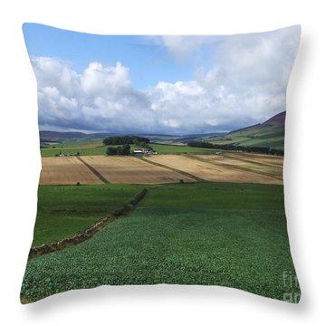 Farmland Near Rhynie, Aberdeenshire Throw Pillow